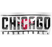 Chicago Bulls Ice Poster