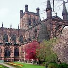 Chester Cathedral in Springtime by AnnDixon