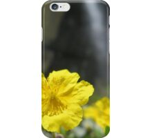 Man Of Colours iPhone Case/Skin