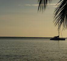 Jamaican Ocean Sunrise by phabbyhowell