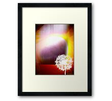 Phenomena Framed Print