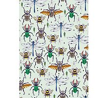 lucky insects pattern Photographic Print