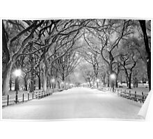 Cental Park New York, NY  winter scene Poster