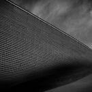 London Aquatic Centre by liberthine01