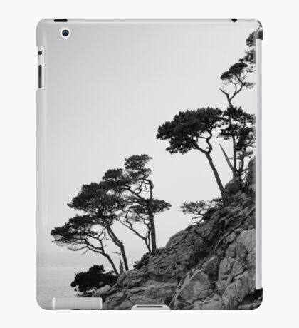 Point Lobos III BW iPad Case/Skin