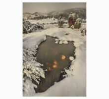 Winter landscape, Cradle Valley Kids Tee