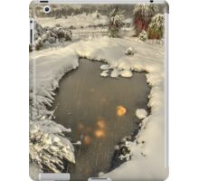 Winter landscape, Cradle Valley iPad Case/Skin