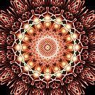 Digitally created firework sunburst by IreKire