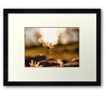 Holding up the sky Framed Print