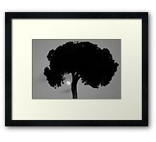 Lone Tree and Rising Moon BW Framed Print