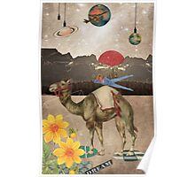 Animal Collection by Elo -- Desert Is A Lonely Place Poster