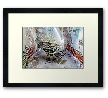Lean Back and Relax Framed Print