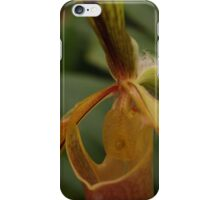 Bristle Orchid  iPhone Case/Skin
