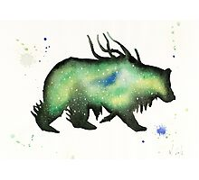 Green Nebula Bear Photographic Print