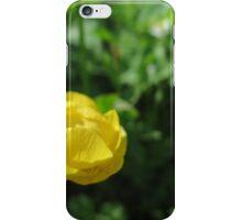 Spanish Gold iPhone Case/Skin