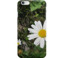 Great Northern Land iPhone Case/Skin