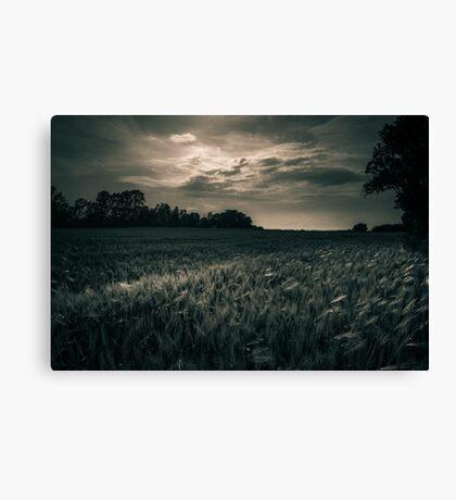 Monochrome Fields Canvas Print