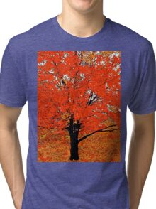 AUTUMN LEAVES Tri-blend T-Shirt