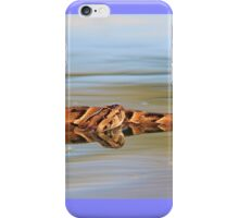 Night Adder - Poisonous Snakes from Africa - Deadly Colors iPhone Case/Skin