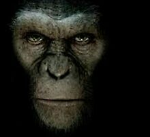 Dawn of the planet of the apes by kslagle