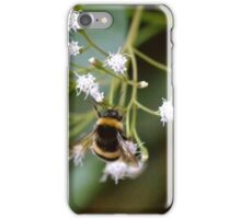 Bee Bumble Bee iPhone Case/Skin