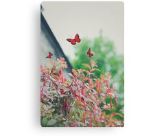BUTTERFLY'S IN THE WIND Canvas Print