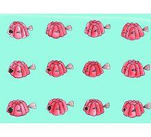 Jelly-fish Photographic Print