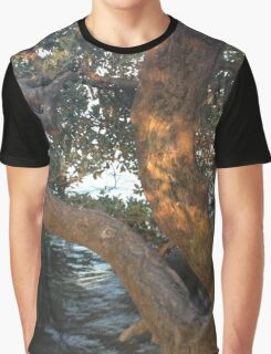 Mangrove Sunset Graphic T-Shirt