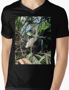 Egret Fledgling Mens V-Neck T-Shirt