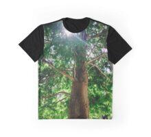 Sunshine Cypress Graphic T-Shirt