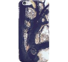 Branching Oak iPhone Case/Skin