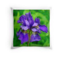 Dwarf Iris Portrait Throw Pillow