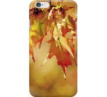 Autumn Leaves iPhone Case/Skin