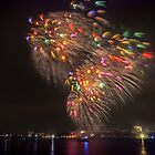 Boston Fireworks - Flying Feathers by Owed to Nature