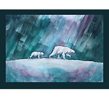 Polar bears - mother and child Photographic Print
