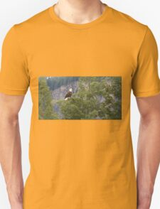 Bald eagle (Haliaeetus leucocephalus T-Shirt