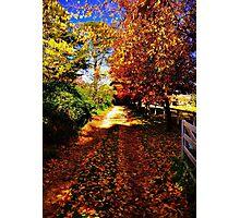 Autumn Lane Photographic Print