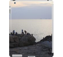Rio 20 iPad Case/Skin
