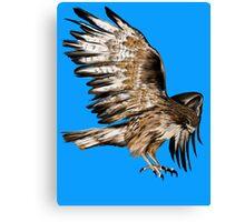 Flying Hawk Canvas Print