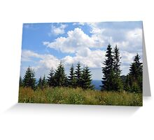 Natural scenery with trees and cloudy sky. Greeting Card