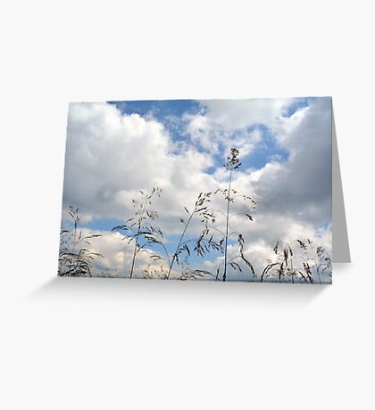 Plants close up against cloudy sky. Greeting Card