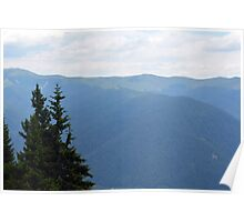 Natural mountains scenery with trees and cloudy sky. Poster