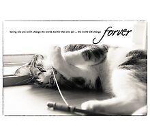 Saving a pet Photographic Print