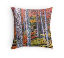 SYCAMORE,AUTUMN Throw Pillow