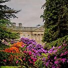 Wentworth Castle 1 by wallarooimages