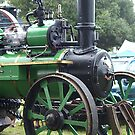 Steam Power - Aveling & Porter Tractor by Patricia Howitt