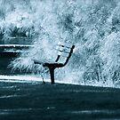Park Seat. by VenturAShot