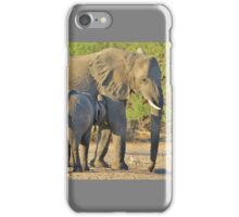 Elephant - Suckling Calf - African Wildlife Background  iPhone Case/Skin