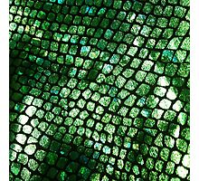 Shiny Emerald Scales Photographic Print
