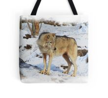 Grey Wolf in Snow Winter Scene Tote Bag